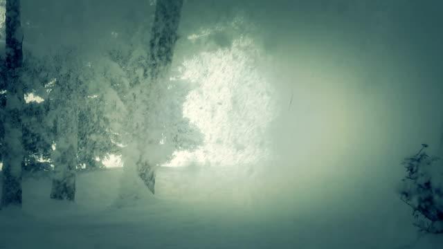 Winter Hintergrund und Schneesturm
