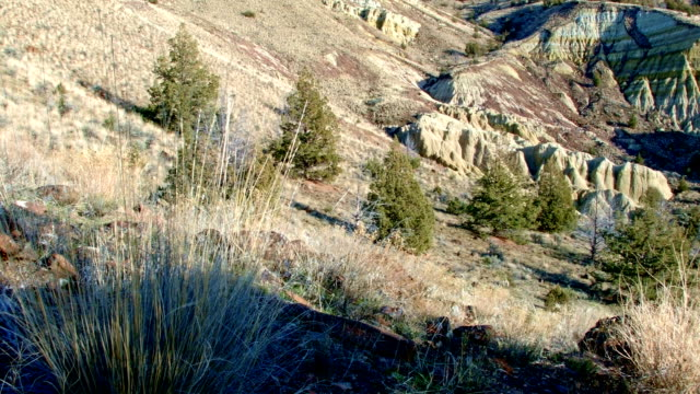 winter badlands formations john day fossil beds sutton mountain 2 painted hills oregon 14 - badlands stock videos & royalty-free footage