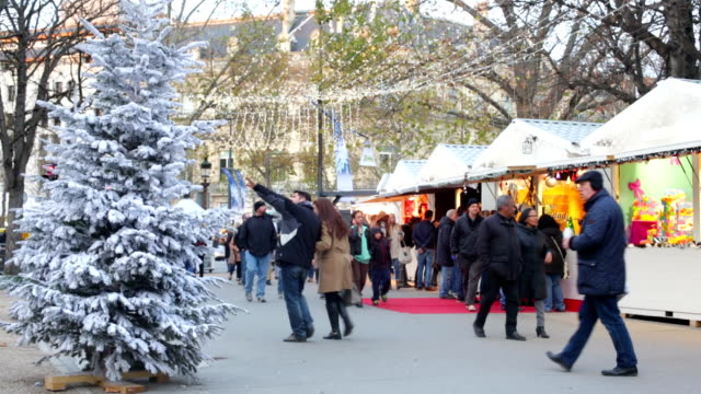 Winter Christmas Shopping Crowds in Paris