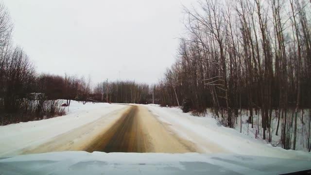 winter dash cam footage of deer - white tailed deer stock videos & royalty-free footage