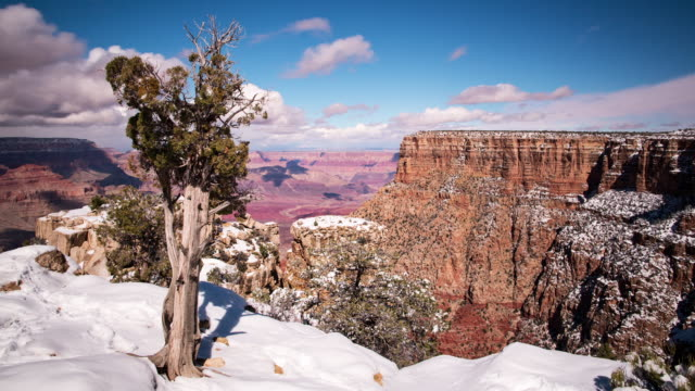 A winter daytime time lapse of the view from Moran Point on the South Rim of the Grand Canyon (Arizona, USA) prominently featuring a Juniperus osteosperma (Utah Juniper) in the foregroundwith snowcover on the ground and clouds moving overhead.