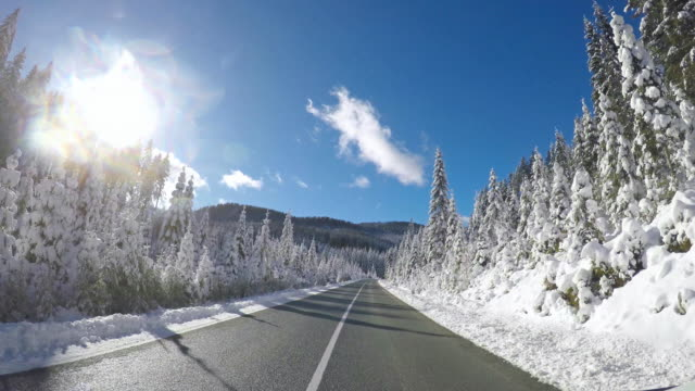 Winter driving on an empty road along snow covered forest on a sunny day