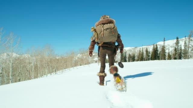 winter explorer - wilderness stock videos & royalty-free footage