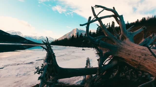 stockvideo's en b-roll-footage met winter exshaw creek aerial - drijfhout