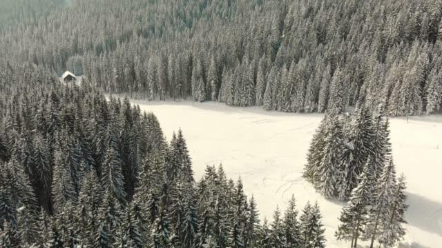 冬のおとぎ話 - 時間の冒険 - winter点の映像素材/bロール