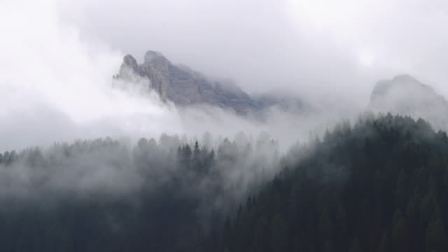 vídeos de stock e filmes b-roll de winter forest timelapse on the dolomites - nevoeiro