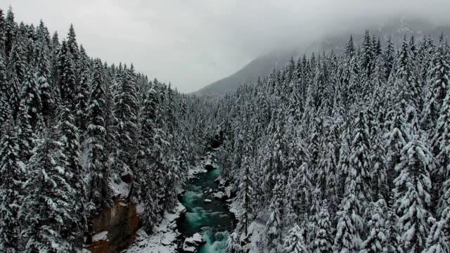 Winter Fraser River