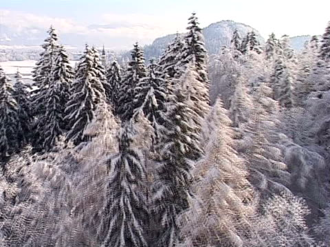 winter from air - lake bled stock videos & royalty-free footage