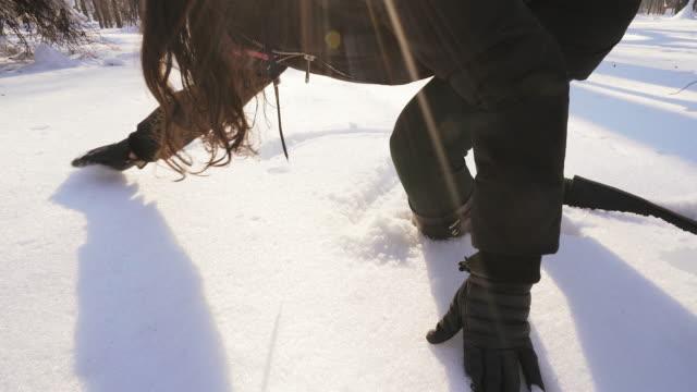 Het hart van de winter in de sneeuw.