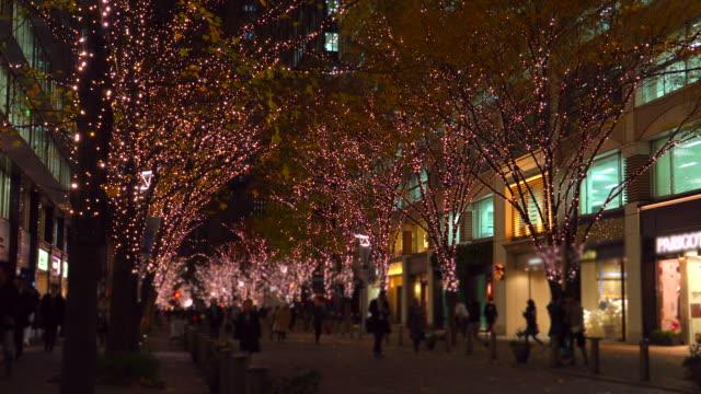 Winter Illumination at Marunouchi,Japan