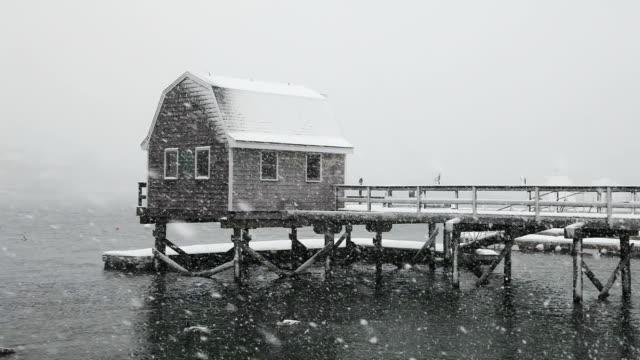 vídeos de stock, filmes e b-roll de inverno em maine - boia equipamento marítimo de segurança