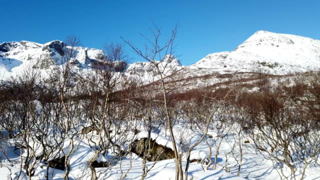 ロフォーテン諸島の山の丘の冬 - hill点の映像素材/bロール