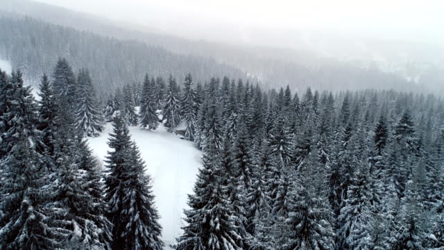 Winter in mountain