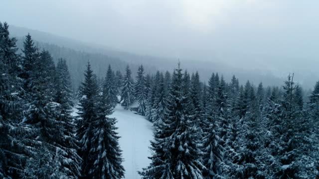 vídeos de stock, filmes e b-roll de inverno na montanha - filme colagem