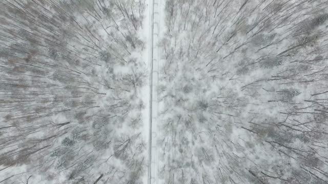 vídeos de stock, filmes e b-roll de winter in mountain - filme colagem