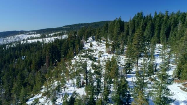 vídeos de stock e filmes b-roll de winter in mountains - sierra nevada da califórnia
