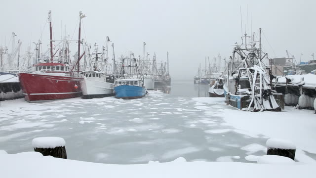 winter in new bedford, massachusetts - new bedford stock videos & royalty-free footage