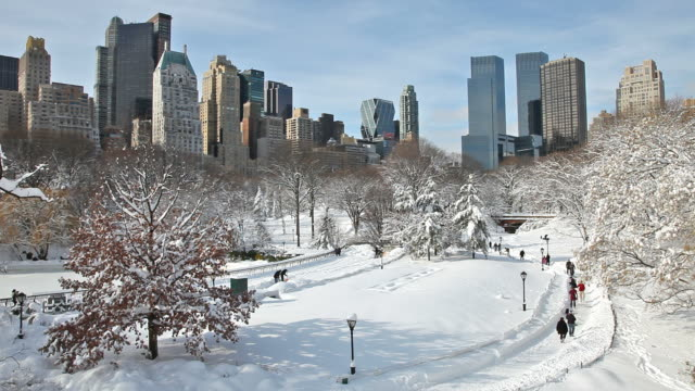 winter in new york city - central park manhattan stock videos & royalty-free footage