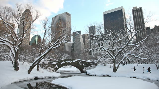 inverno a new york city - le quattro stagioni video stock e b–roll