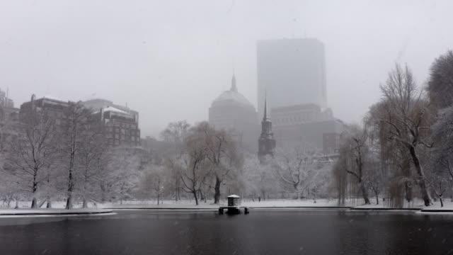 winter in the boston public garden - boston massachusetts stock videos & royalty-free footage