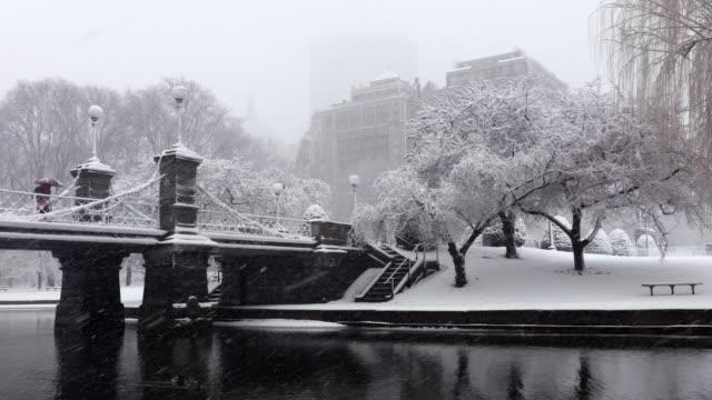 Winter in the Boston Public Garden