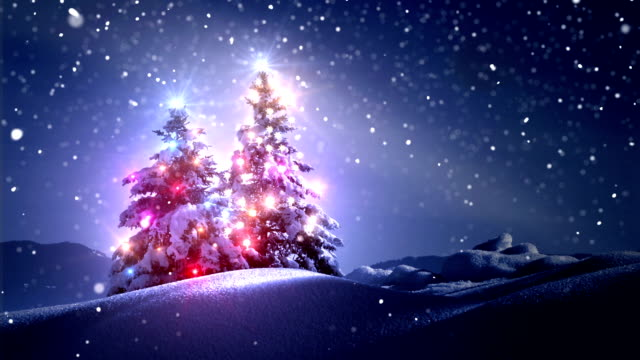 winter landscape and new year - christmas tree stock videos & royalty-free footage