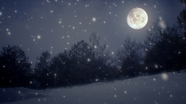 Winter landscape and snow with moon (loopable)