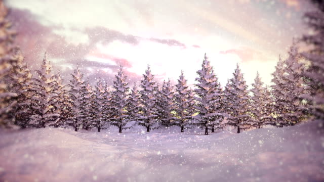 winter landscape | christmas - snowing stock videos & royalty-free footage