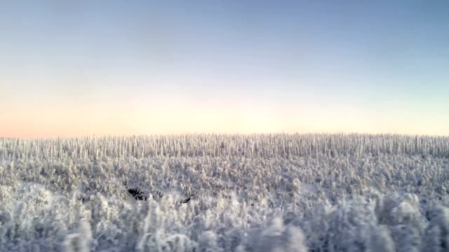 Winter Landscape in Swedish Lapland Kiruna Sweden