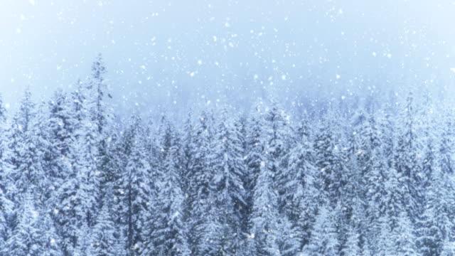 vídeos de stock, filmes e b-roll de paisagem do inverno | loopable - snow cornice