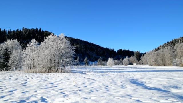 winter landscape near lake barmsee, krün, garmisch-partenkirchen upper bavaria, bavaria, germany, european alps - krün stock videos and b-roll footage