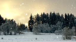 Winter landscape seamless loop background with snowflakes