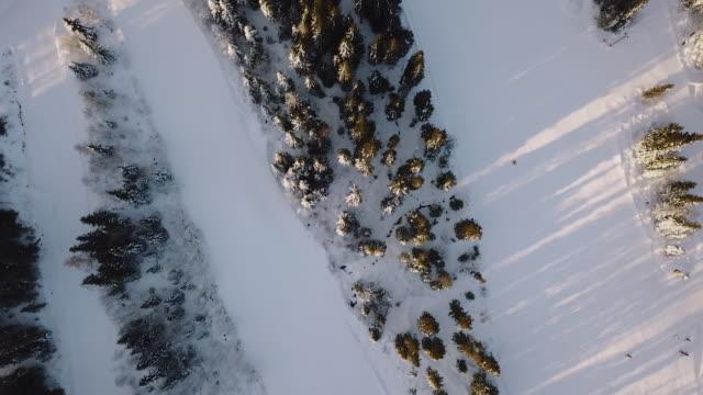 Winter landscape skiing