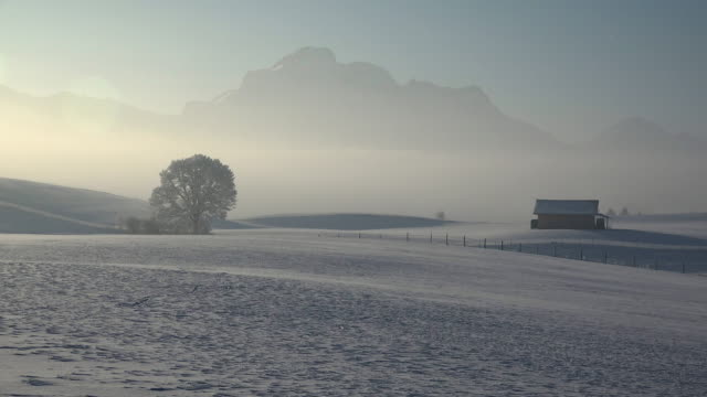 winter landscape, trauchgau near fuessen, allgaeu alps, swabia, bavaria, germany - 静かな情景点の映像素材/bロール
