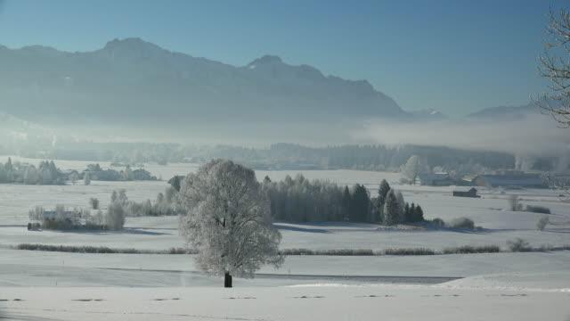 winter landscape, trauchgau near fuessen, allgaeu alps, swabia, bavaria, germany - establishing shot stock videos & royalty-free footage