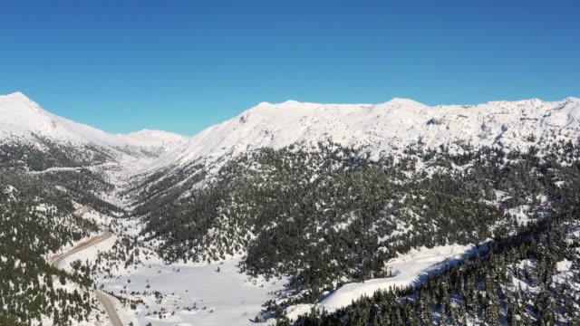 vídeos y material grabado en eventos de stock de paisaje invernal - pinar