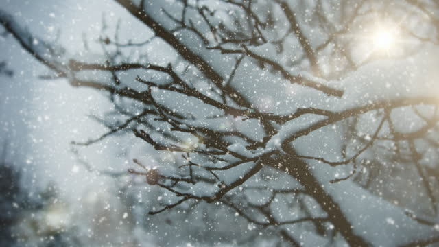 winter landscape - electric lamp stock videos & royalty-free footage