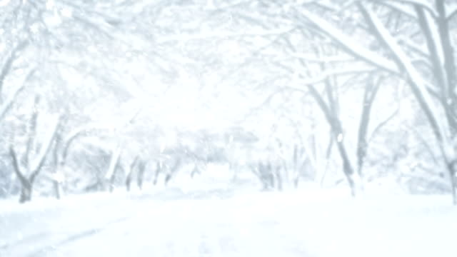vídeos de stock, filmes e b-roll de paisagem do inverno 4k - chuva congelada