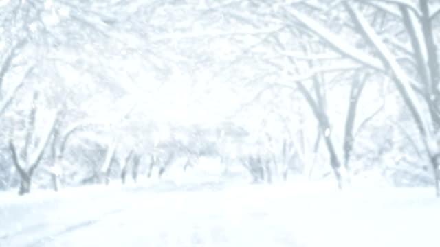 4k winter landscape - snow cornice stock videos and b-roll footage