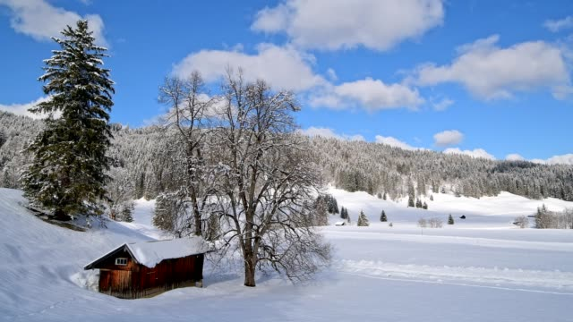 vídeos de stock, filmes e b-roll de winter landscape with wooden cabin, elmau, garmisch-partenkirchen, upper bavaria, bavaria, germany, european alps - montanhas wetterstein
