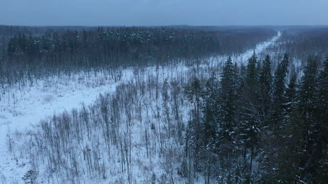 winter landscpae, above the north of belarus - named wilderness area stock videos & royalty-free footage