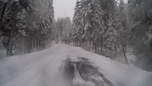 vidéos et rushes de a winter lanscape in yosemite national park with trees and beautiful scenery. - neige fraîche