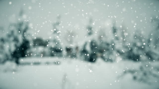 winter | loopable - snow storm stock videos and b-roll footage