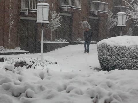 vidéos et rushes de hiver; homme marchant dans la tempête de neige - trébucher