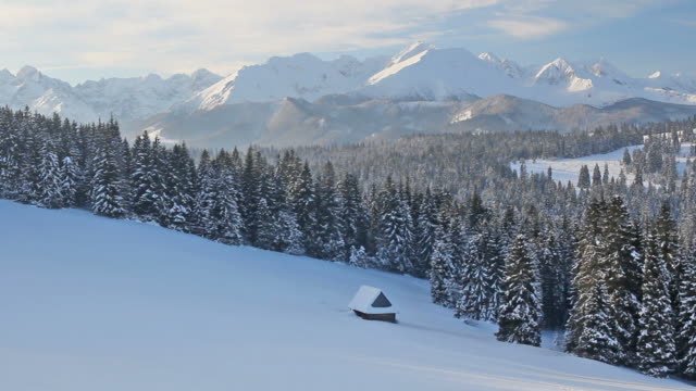 winter morning view of the tatra mountains, poland - poland stock videos & royalty-free footage