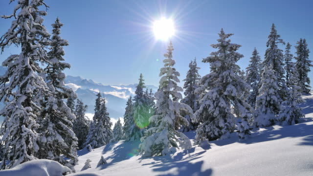 winter, mountain landscape