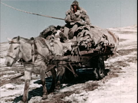 winter on the mongolian steppe - cart stock videos & royalty-free footage