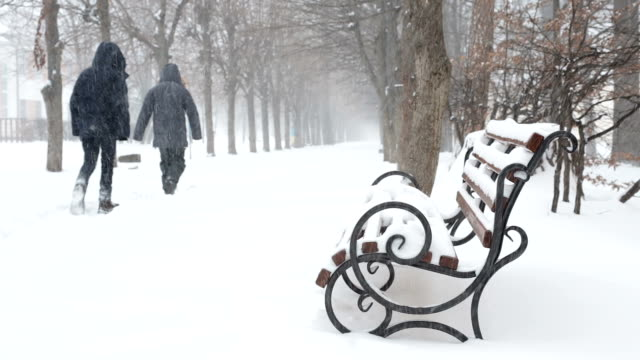 Winter park in blizzard. Bench covered with snow.