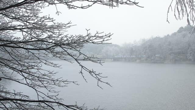 冬のライム湖 - winter点の映像素材/bロール
