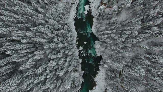 winter river - kanada stock-videos und b-roll-filmmaterial